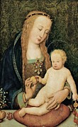Child Jesus Photo Prints - Holbein Hans Il Giovane, Virgin Print by Everett