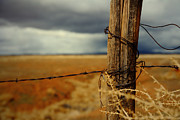 Fence Post Prints - Hold Back The Storm Print by Mark  Ross