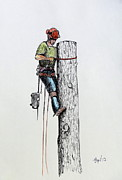 Pear Tree Mixed Media - Hold on tight Tree surgeon at work by Gordon Lavender