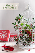 Christmas Posters - Holiday Birdcage Poster by Christopher and Amanda Elwell