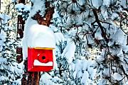 Holiday Birdhouse Print by Teri Virbickis