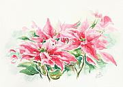 Christmas Greeting Originals - Holiday Flowers by Elisabeta Hermann