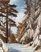 Rural Snow Scenes Prints - Holland Lake Lodge Road - Montana Print by Mary Ellen Anderson