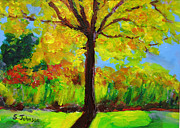 Suzanne Johnson - Holland Ponds Tree in...