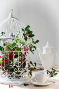 Christmas Posters - Holly and Berries Birdcage Poster by Christopher and Amanda Elwell