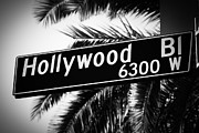 Boulevard Framed Prints - Hollywood Boulevard Street Sign in Black and White Framed Print by Paul Velgos