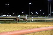 Horses Acrylic Prints - Hollywood Casino at Charles Town Races - 121221 Acrylic Print by DC Photographer