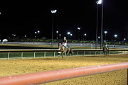 Horses Prints - Hollywood Casino at Charles Town Races - 121222 Print by DC Photographer