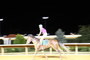 West Framed Prints - Hollywood Casino at Charles Town Races - 121226 Framed Print by DC Photographer