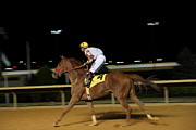 Wv Prints - Hollywood Casino at Charles Town Races - 121229 Print by DC Photographer