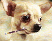 Smoking Cigarette Prints - Hollywood Fifi Chika Chihuahua - Painterly Print by Wingsdomain Art and Photography