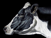 Photo Realism Prints - Holstein Friesian Dairy Cow  Print by Brent Schreiber