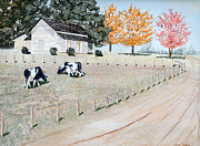 Black Angus Prints - Holstiens Grazing Print by Jim Ivey