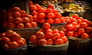 Tomatos Prints - Home Grown Print by Karen Wiles