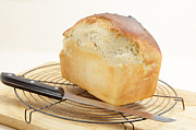 Home Made Food Photos - Homemade bread  by Paul Cowan