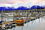 Boats In Harbor Framed Prints - Homer Harbor Framed Print by Frank Savarese