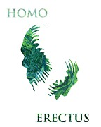 Stefan Kuhn - HOMO ERECTUS 2