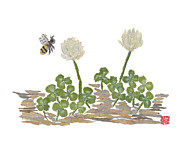 Torn Painting Framed Prints - Honey Bee And Clovers Framed Print by Keiko Suzuki