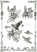 Bee Drawings - Honey Bee Races by Rita Welegala