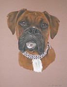 Boxer Pastels Metal Prints - Honey Metal Print by Joanne Simpson
