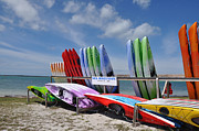 Causeway Coast Prints - Honeymoon Island Kayaks Print by Bill Cannon