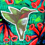 Genevieve Esson - Honeysuckle Hummingbird