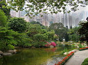 Honk Prints - Hong Kong Park Print by Art Photography