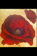 Poppy Drawings - Honor in the sunshine by Aysugul Alptekin