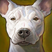 White Dog Framed Prints - Honor Framed Print by Sean ODaniels
