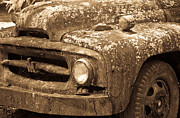 Lichen-covered Fence Prints - Hood of International Harvester Truck in Sepia Print by Douglas Barnett