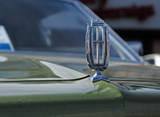 Marquis Drive Framed Prints - Hood ornament on the 1975 green Mercury Marquis Framed Print by Andrei Filippov