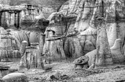 Unusual Landscape Posters - Hoodoos Bisti/De-Na-Zin Wilderness Monochrome Poster by Bob Christopher