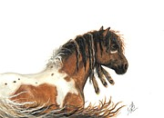 Tri Color Horse Paintings - Hopa Majestic Mustang 63 by AmyLyn Bihrle