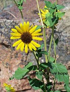 Horticulture Mixed Media Posters - Hope 1 Poster by Chalet Roome-Rigdon