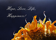 Xueling Zou Digital Art Posters - Hope Love Life Happiness Poster by Xueling Zou