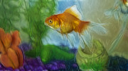 Marcel Verhaar Prints - Hope the Goldfish Print by Marcel Verhaar