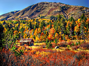 Rustic Colors Posters - Hope Valley Fall Color Poster by Scott McGuire