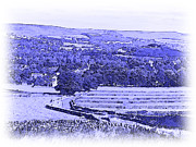 Blue And White Porcelain Prints - Hope Valley Print by Jane McIlroy