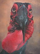 Hornbill Painting Framed Prints - Hornbill Framed Print by Keith Michenzie