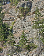 Hornby Island Photos - Hornby Island Rocky Cliffs by Lee Kennedy