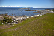 Hornby Island Photos - Hornby Island Shoreline by Graham Foulkes