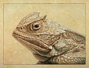 James W Johnson Drawings Framed Prints - Horned Toad Framed Print by James W Johnson