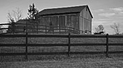Hay Bale Photos - Horse and Barn by Robert Harmon