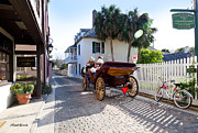 St. Augustine Posters - Horse and Buggy Ride St Augustine Poster by Michelle Wiarda