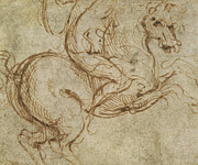 Animal Drawings Posters - Horse and Cavalier Poster by Leonardo da Vinci
