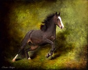 Greeting Digital Art Metal Prints - Horse Angel Metal Print by Dorota Kudyba