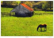 Lar Matre - Horse Barn