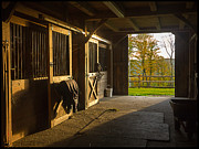 Horse Farm Posters - Horse Barn Sunset Poster by Edward Fielding