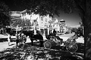 Drawn Prints - Horse Drawn Carriage In Front Of Market Street Shops Cafes And Restaurants Downtown Celebration Flor Print by Joe Fox