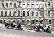 Cart Horse Photos - Horse-drawn Carriage by Valentino Visentini